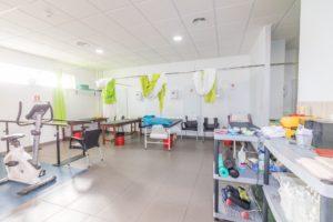 fisioterapia ceretir (9)